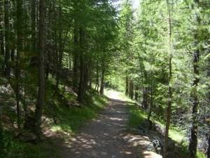 Fletschhorn Mountains for Everybody
