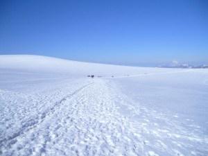 Breithorn - plateau