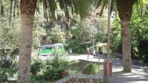 chamorga faro de anaga- bus station