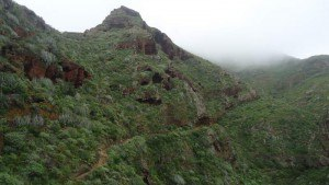 Anaga Mountains Tenerife - from the route to Punta del Hidalgo