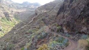 chamorga faro de anaga-path to chamorga