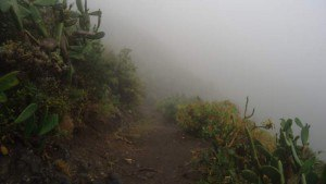 My first photo above Chamorga.