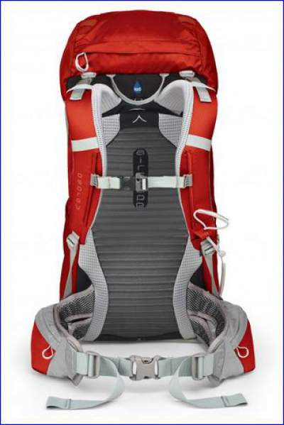 The back of Kestrel 28 pack with the harness.