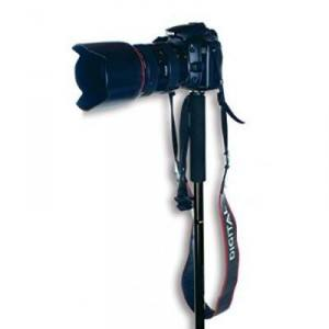 A camera mounted on a trekking pole.
