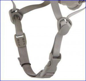 Chin strap with plastic elements for adjustment and the buckle.