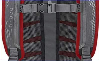 Back panel with mesh and air-flow channels.