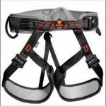A climbing harness.