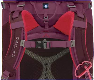 Details form the harness and back panel.