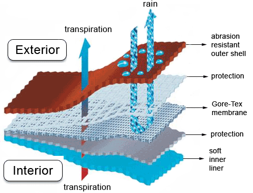 Structure of a Gore Tex laminate.