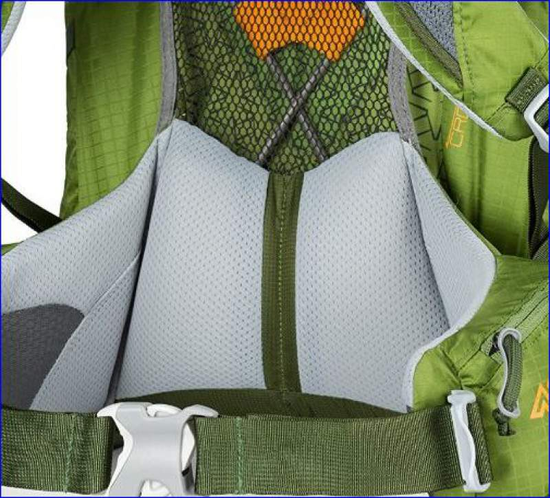 Nice lumbar padding and suspended mesh behind. X-frame is also visible.