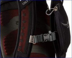 Details: a zippered harness pocket, and the chest strap.