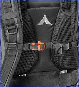 The chest strap with emergency whistle.