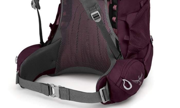 The hip belt in the Osprey Renn 50 pack.