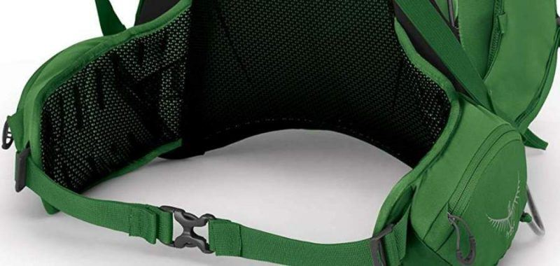 The hip belt padding and lumbar support.