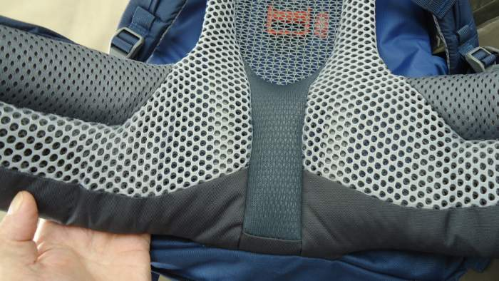 Incredibly nicely padded hip belt in the Deuter Futura Vario 50 + 10 pack.